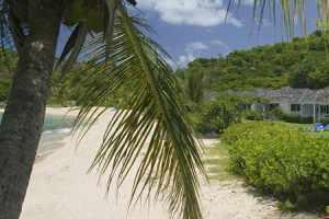 Antigua swingers